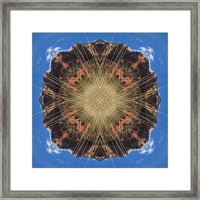 Framed Print featuring the digital art Shine by Trina Stephenson