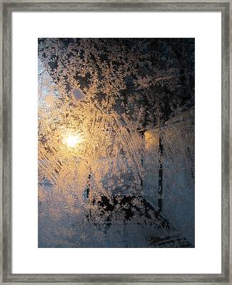 Shines Through And Illuminates The Day Framed Print