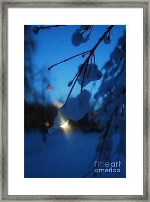 Shining Flakes Framed Print by Susan Hernandez
