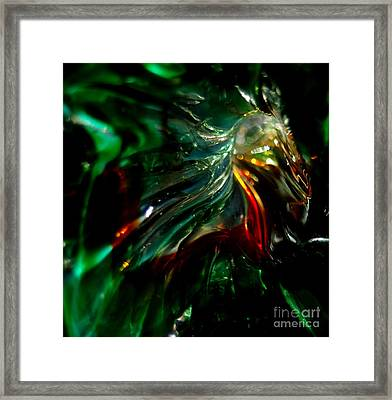 Shining Through The Glass Framed Print by Kitrina Arbuckle