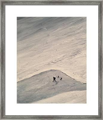 Shinny Keeper Framed Print by Desmond Raymond