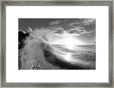 Shiny Comforter Framed Print by Sean Davey