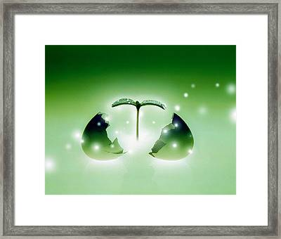 Shiny Green Egg Bursting In Two Framed Print by Panoramic Images