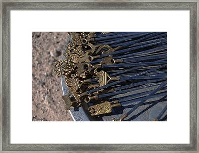 Shish For Kabobs Framed Print by Jacqueline M Lewis