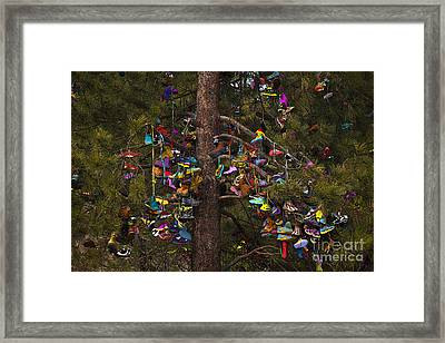 Shoe Shrine Framed Print