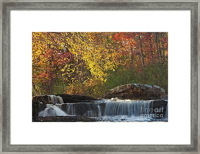 Shohola Falls Framed Print by Nicki McManus