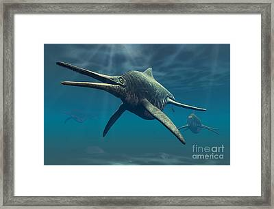 Shonisaurus Was A Genus Of Ichthyosaur Framed Print by Philip Brownlow