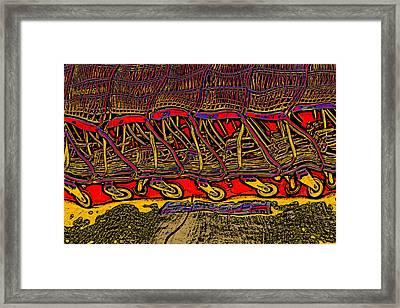 Framed Print featuring the digital art Shopping Carts by Richard Farrington