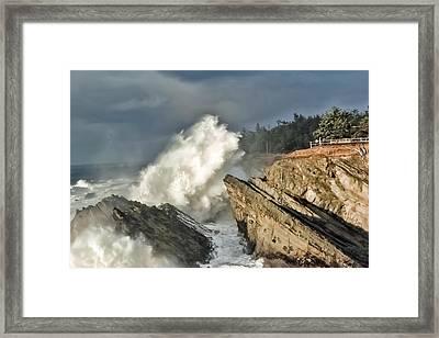 Shore Acres 13 Framed Print