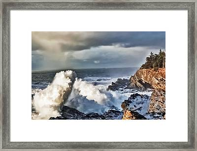 Shore Acres 16 Framed Print