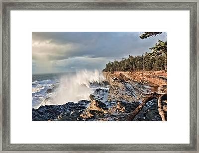 Shore Acres 18 Framed Print