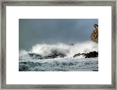Shore Acres 8 Framed Print