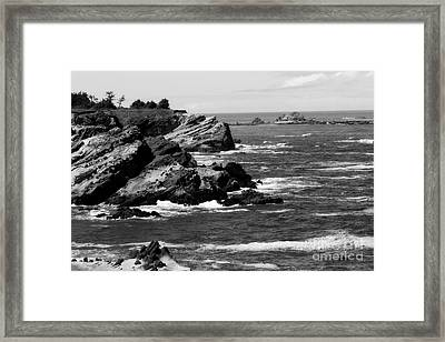 Shore Acres Framed Print