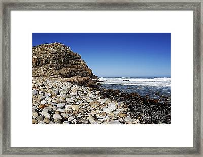 Shore At Cape Of Good Hope Framed Print by Sami Sarkis