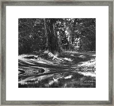 Framed Print featuring the pyrography Shore by Evgeniy Lankin