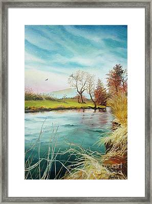 Framed Print featuring the painting Shore Of The River by Sorin Apostolescu