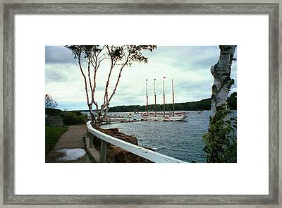 Framed Print featuring the photograph Shore Path In Bar Harbor Maine by Judith Morris