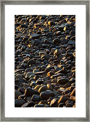 Shore Stones Framed Print by Steve Gadomski