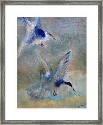 Shorebirds Framed Print by Susan Hanlon