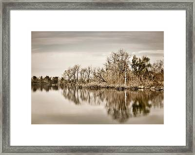 Shoreline 1 Framed Print