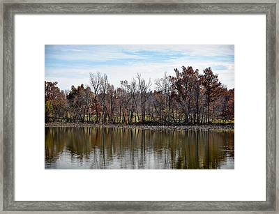 Framed Print featuring the photograph Shoreline 2 by Greg Jackson