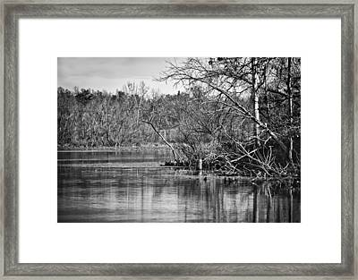 Framed Print featuring the photograph Shoreline 4 by Greg Jackson