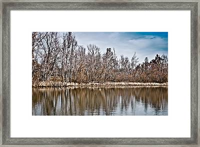 Framed Print featuring the photograph Shoreline 5a by Greg Jackson
