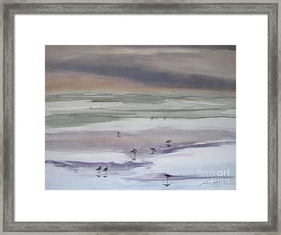 Shoreline Birds II Framed Print by Julianne Felton