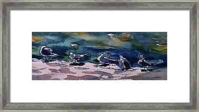 Shoreline Birds Iv Framed Print by Julianne Felton