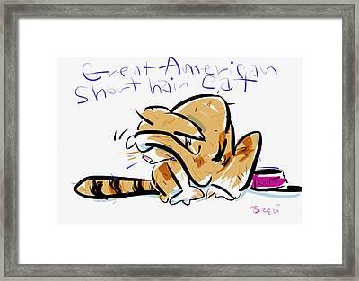 Short Hair Cat Framed Print by Brett LaGue