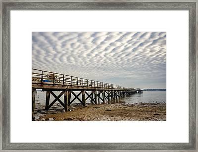Shotley Coast Framed Print by Svetlana Sewell
