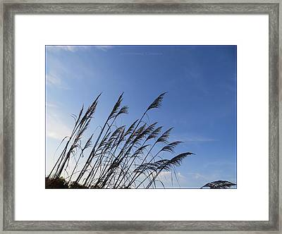 Should We Paint Framed Print by Sonali Gangane