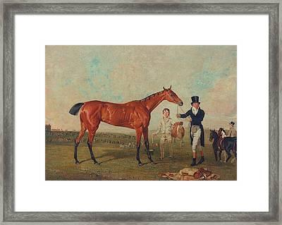 Shoveller Held By Her Trainer Will Chifney Framed Print by Benjamin Marshall