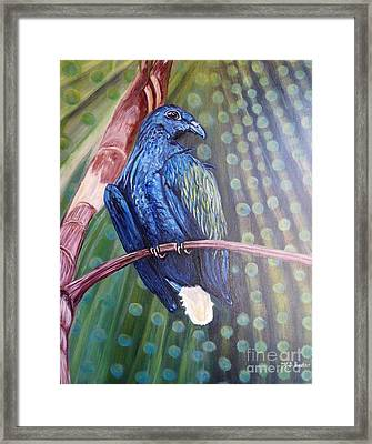 Showered With The Light Of His Creation Framed Print