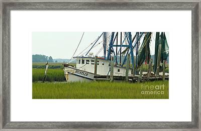 Shrimp Boat And Pelican - Lowlands Of South Carolina Framed Print