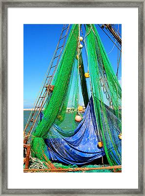 Shrimp Season Framed Print
