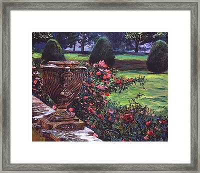 Shrub Roses In Somerset Framed Print by David Lloyd Glover