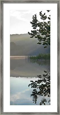 Framed Print featuring the photograph Shy Vanity by Tom Cameron