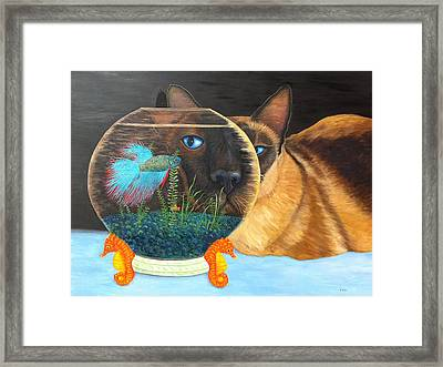 Siam I Am Framed Print