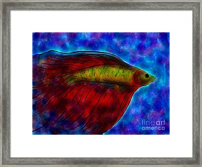 Siamese Fighting Fish II Framed Print