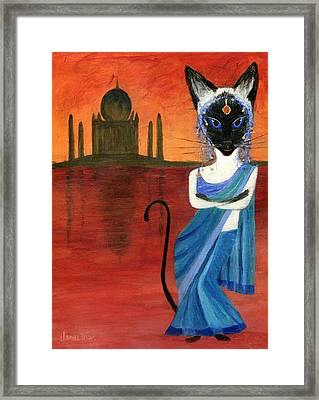 Siamese Queen Of India Framed Print by Jamie Frier