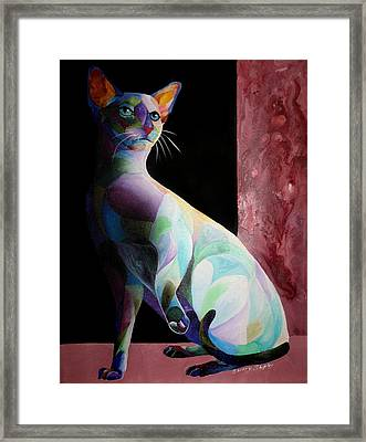Siamese Shadow Cat 1 Framed Print