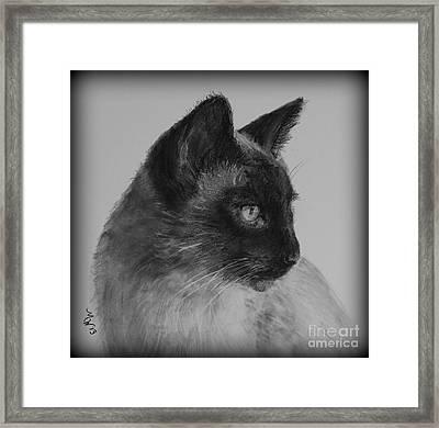 Siamese Silence Framed Print