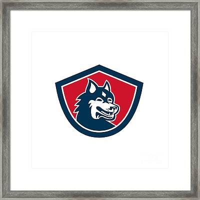Siberian Husky Dog Head Shield Retro Framed Print by Aloysius Patrimonio