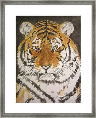 Siberian Tiger Framed Print by Regan J Smith