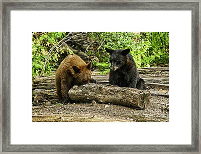 Sibling Lunch Framed Print