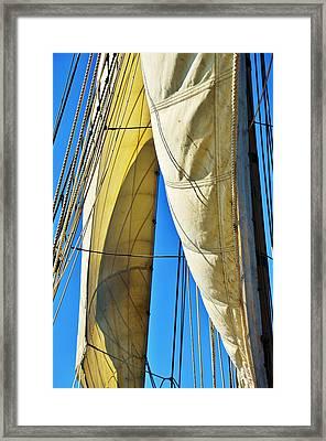 Sibling Sails Framed Print