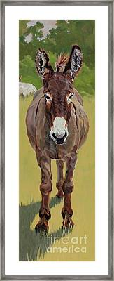 Sicilian Framed Print by Patricia A Griffin