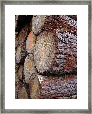 Side Log View Framed Print by Michel Mata