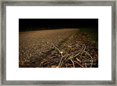 Side Of The Road Framed Print by Jolanta Meskauskiene